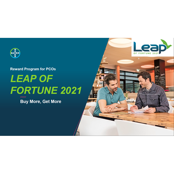 Leap of Fortune 2019